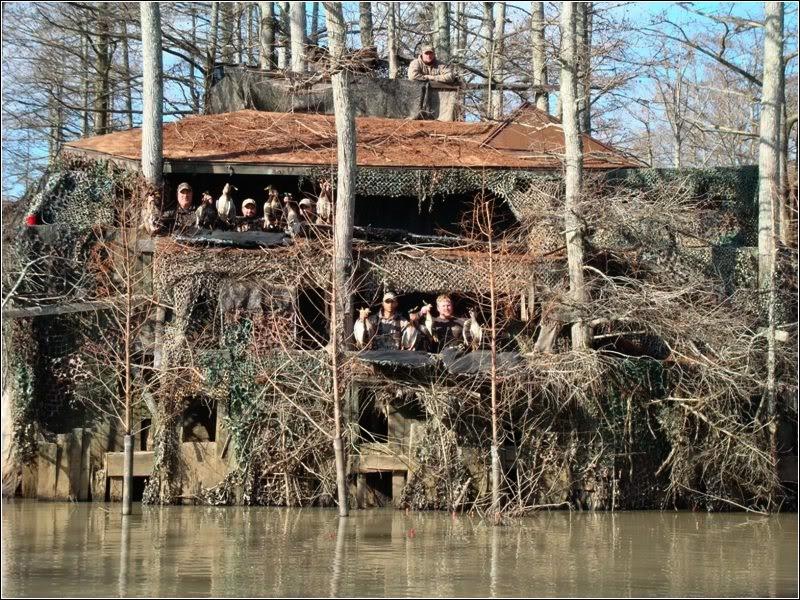 Louisiana duck blind