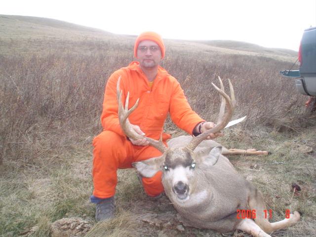 Zone 5 Mule Deer