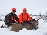 Mule Deer Paradise!