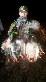 Late Season Mallards