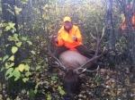 6x6 Elk